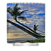Palms Of Kaanapali Shower Curtain