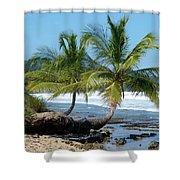 Palms On Ocean Shower Curtain