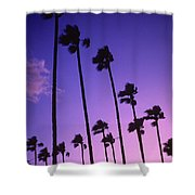 Palms Shower Curtain