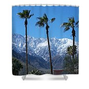 Palms With Snow Shower Curtain