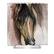 Palomino Arabian Horse Watercolor Portrait Shower Curtain