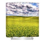 Palouse Hills Canola Shower Curtain