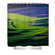 Palouse - Later Afternoon Shower Curtain