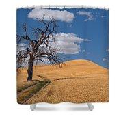Palouse Wheat Field Shower Curtain