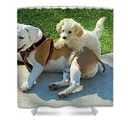 Pals - Linus And Buddy Shower Curtain
