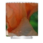 Panel One From Iris Shower Curtain