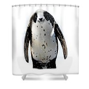 Panguin Shower Curtain