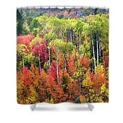 Panoply Of Autumn Color Shower Curtain