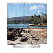 Panorama Shower Curtain