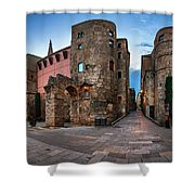 Panorama Of Ancient Roman Gate And Placa Nova In The Morning, Ba Shower Curtain