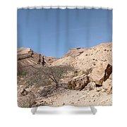 Panorama On Genesis Land 03 Shower Curtain by Arik Baltinester