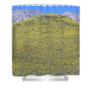 Panoramic View Of Desert Gold Yellow Shower Curtain