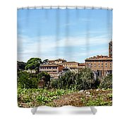 Panoramic View Of Rome Shower Curtain