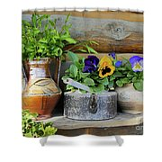 Pansies In Pots Shower Curtain