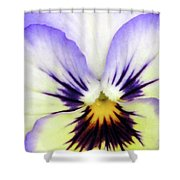 Pansy 01 - Thoughts Of You Shower Curtain