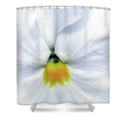 Pansy 03 - Thoughts Of You Shower Curtain