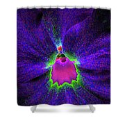 Pansy 05 - Photopower - Thoughts Of You Shower Curtain