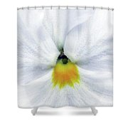 Pansy 05 - Thoughts Of You Shower Curtain