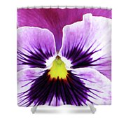 Pansy 07 - Thoughts Of You Shower Curtain