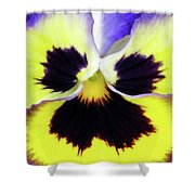 Pansy 09 - Thoughts Of You Shower Curtain