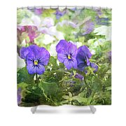 Pansy Impressions Shower Curtain