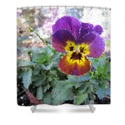 Pansy Perfection Shower Curtain