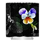Pansy Statement Shower Curtain