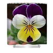 Pansy White Wings Shower Curtain