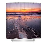 Panther Beach Shower Curtain