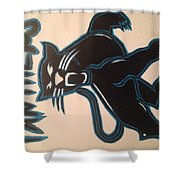 Panthers Nfl Logo Shower Curtain