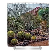 Papago And Barrels Shower Curtain