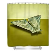 Paper Airplanes Of Wood 19 Shower Curtain