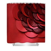 Paper And Beets Shower Curtain