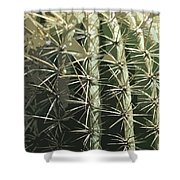 Paper Cactus Shower Curtain