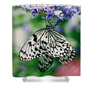 Paper Rice Butterfly Shower Curtain