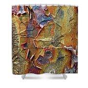 Paperbark Maple   Shower Curtain