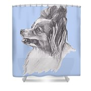 Papillon Dog Charcoal Drawing Shower Curtain