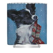 Papillon Puppy With Xmas Stocking Shower Curtain