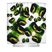 Para Black Shower Curtain
