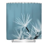 Parachutes - T Shower Curtain