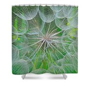 Parachutes For Seeds Shower Curtain