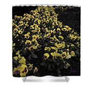 Parade For Lynne C Shower Curtain