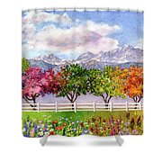 Parade Of The Seasons Shower Curtain