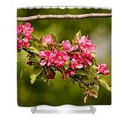 Paradise Apples Flowers Shower Curtain