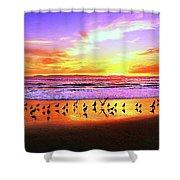 Paradise Found, Huntington Beach, California, Catalina Island Shower Curtain
