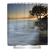 Paradise Gold Shower Curtain by Mike  Dawson