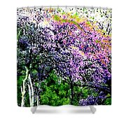 Paradise Hills Shower Curtain
