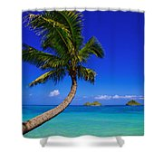 Paradise Palm Over Lanikai Shower Curtain