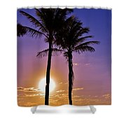 Paradise Palms Shower Curtain