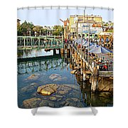 Paradise Pier At California Adventure Shower Curtain